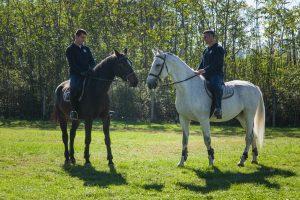 Nasi konji (1)